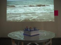 Tomate de mar en la playa